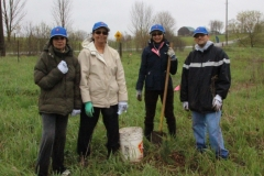 York Region Tree Planting volunteer group